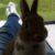 Profilbild von Sabi21000